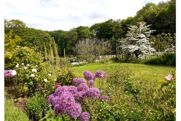 Promenade du jardin des Princes en juin